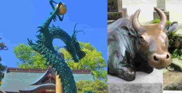 龍神族と牛神族に世界は分かれている